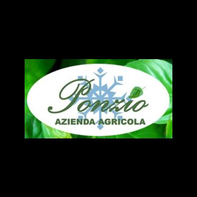 PONZIO -